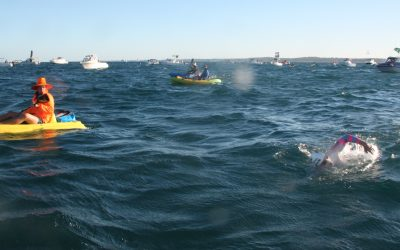 From near drowning to endurance ocean swimming