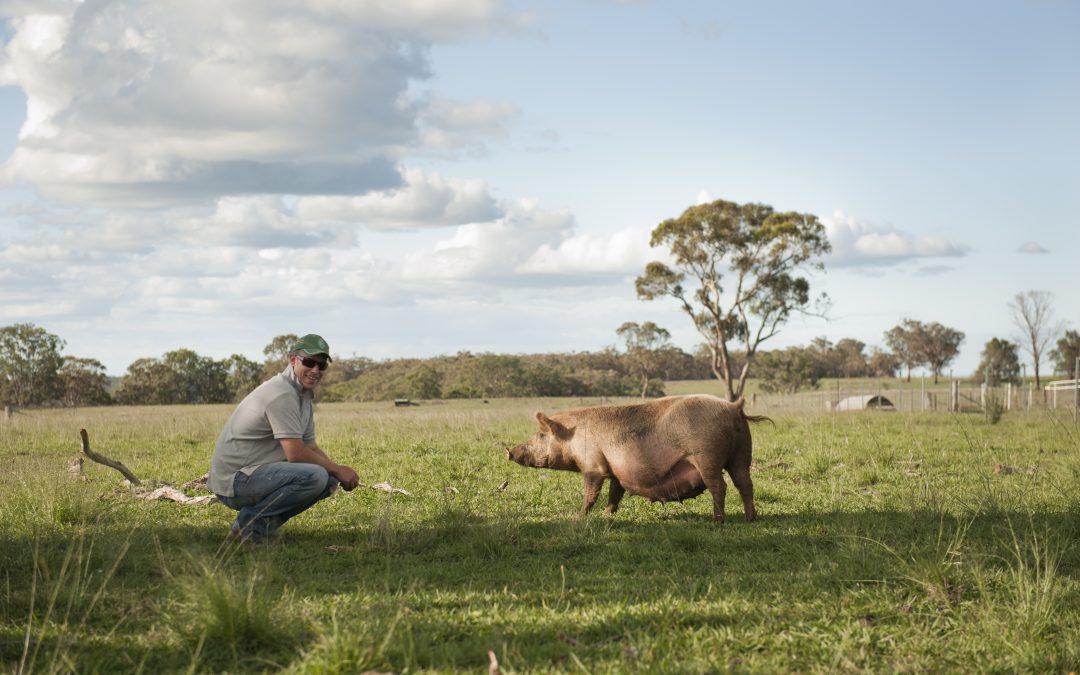 """Meet Ben """"The Free Range Butcher"""""""