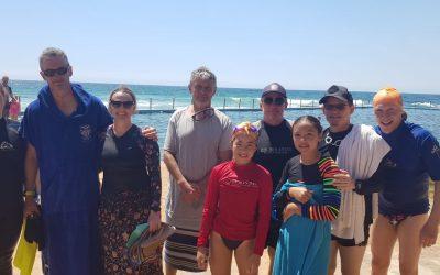 2nd Annual Sea Monkeys Pool to Pool Swim